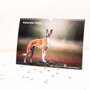 Hundar Utan Hem Kalender 2020