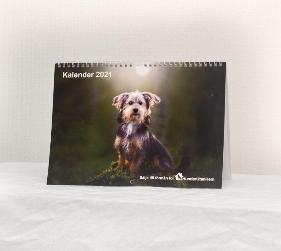 Hundar Utan Hem Kalender 2021