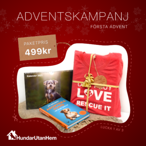 Kampanj - 1:a advent
