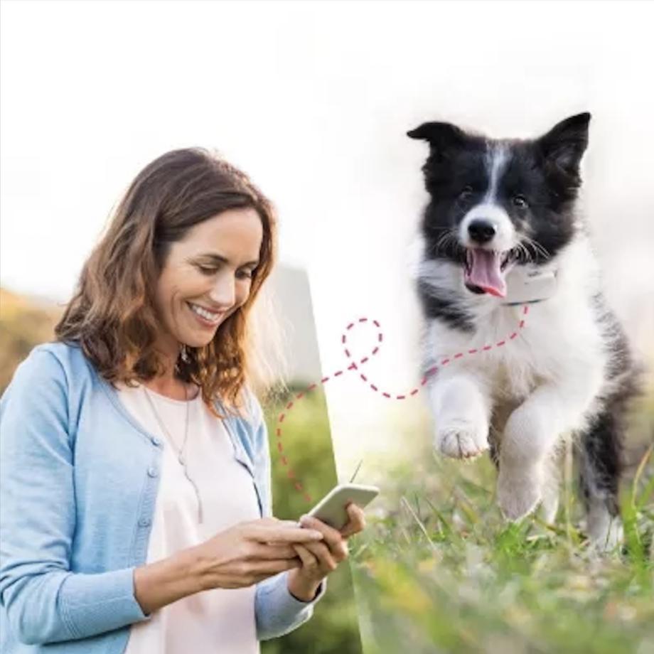GPS-sändare för hund