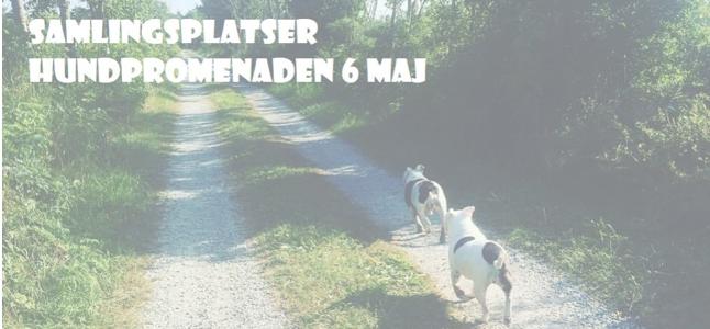 Hundpromenaden