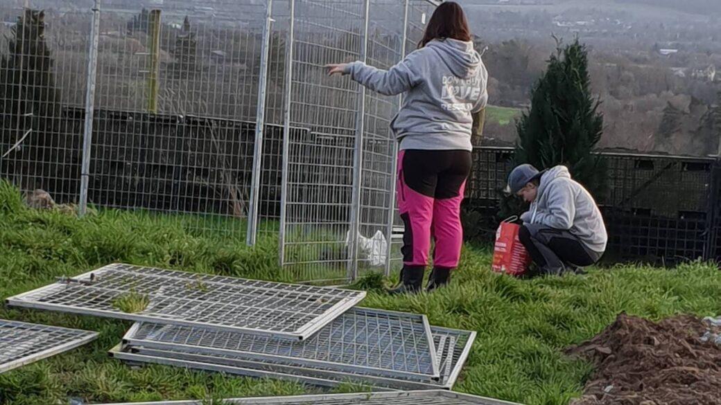 Rescuebygge - Volontärer bygger hundgårdar