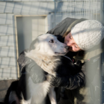 Rescuebygge - Arbetet med hundhus nr två pågår för fullt!