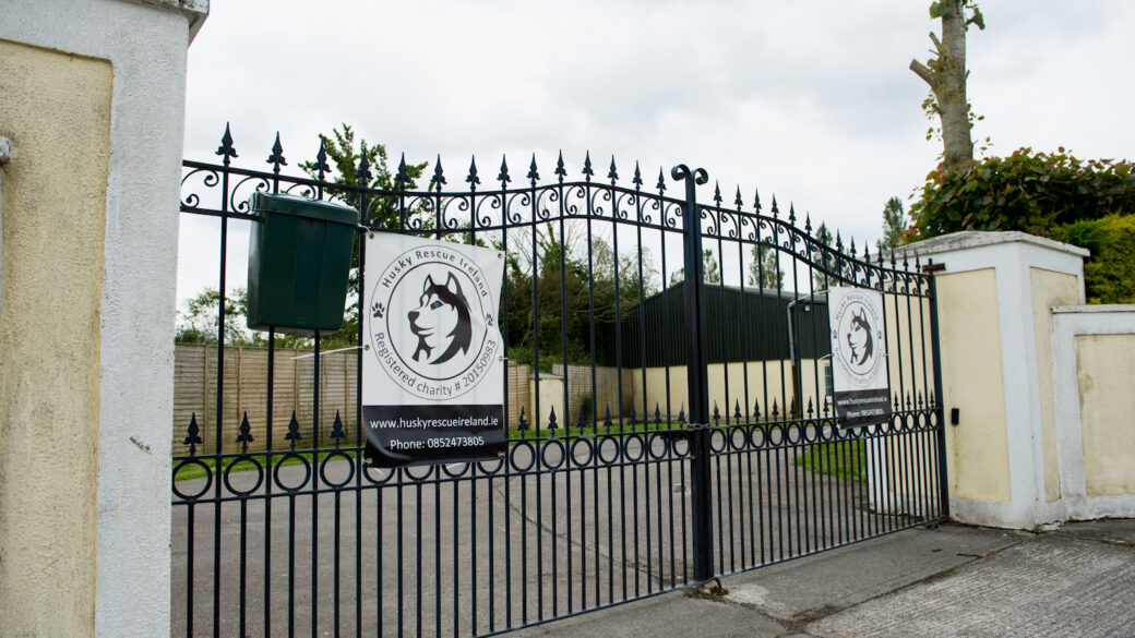 Husky Rescue Ireland