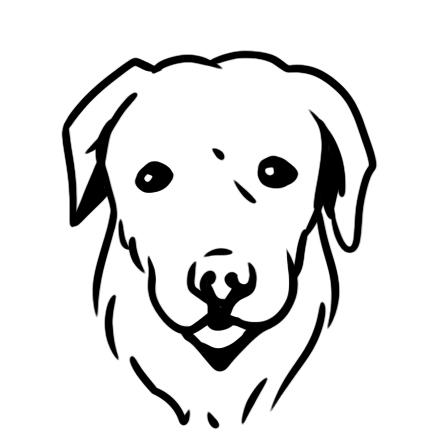 Mellanstora hundar