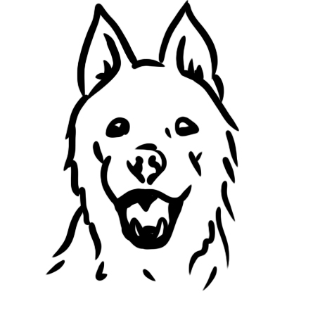 Polarhundar