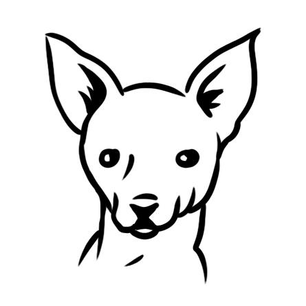 Små hundar