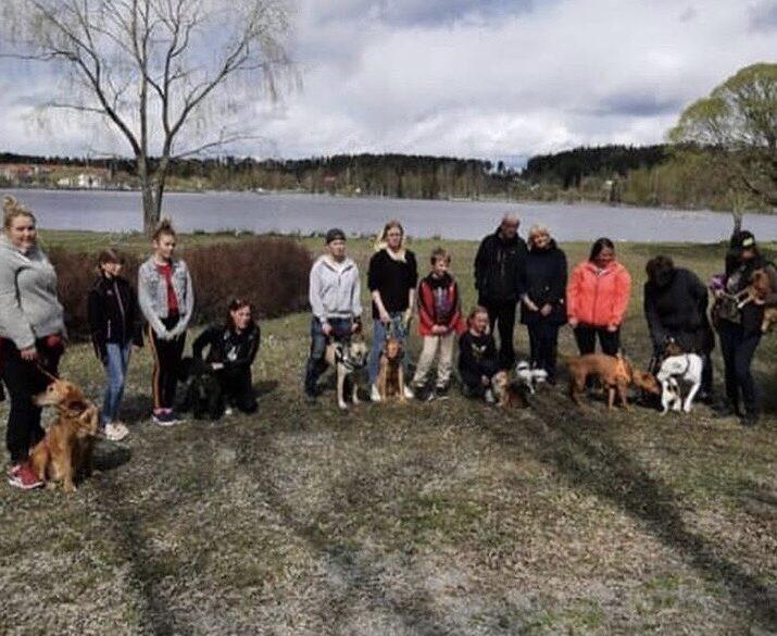 Hundpromenaden 2019