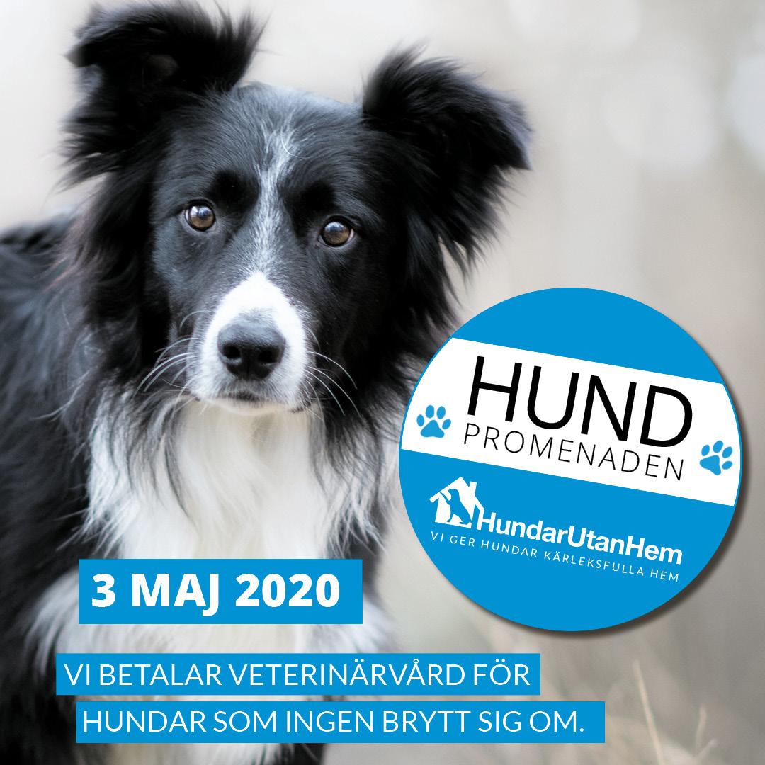 Hundpromenaden 2020