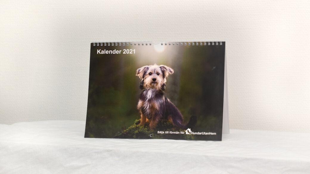 Köp Hundar Utan Hems väggkalender 2021!