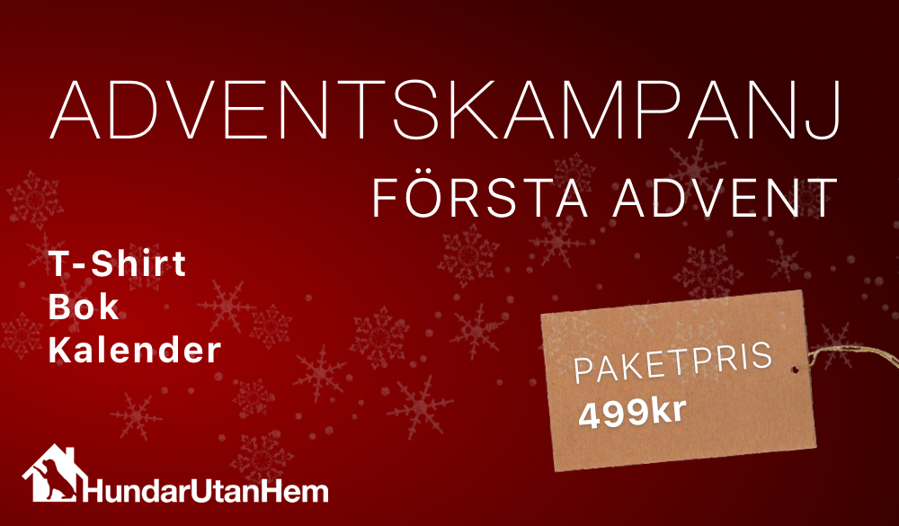 1:a advent kampanj