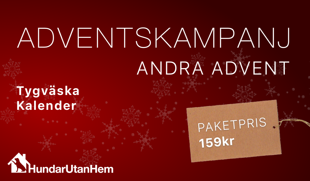 2:a advent kampanj
