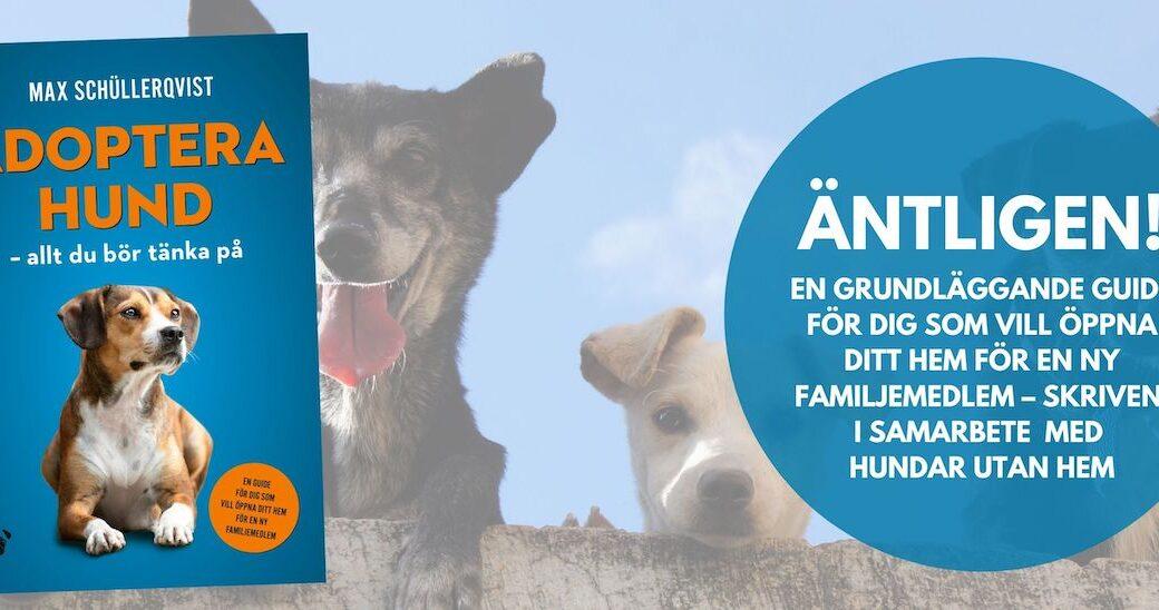 """Nu finns boken om att """"Adoptera hund"""" i webbshoppen"""